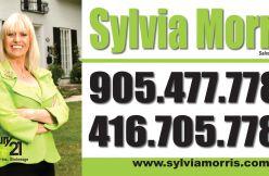 Portfolio image for Sylvia Morris
