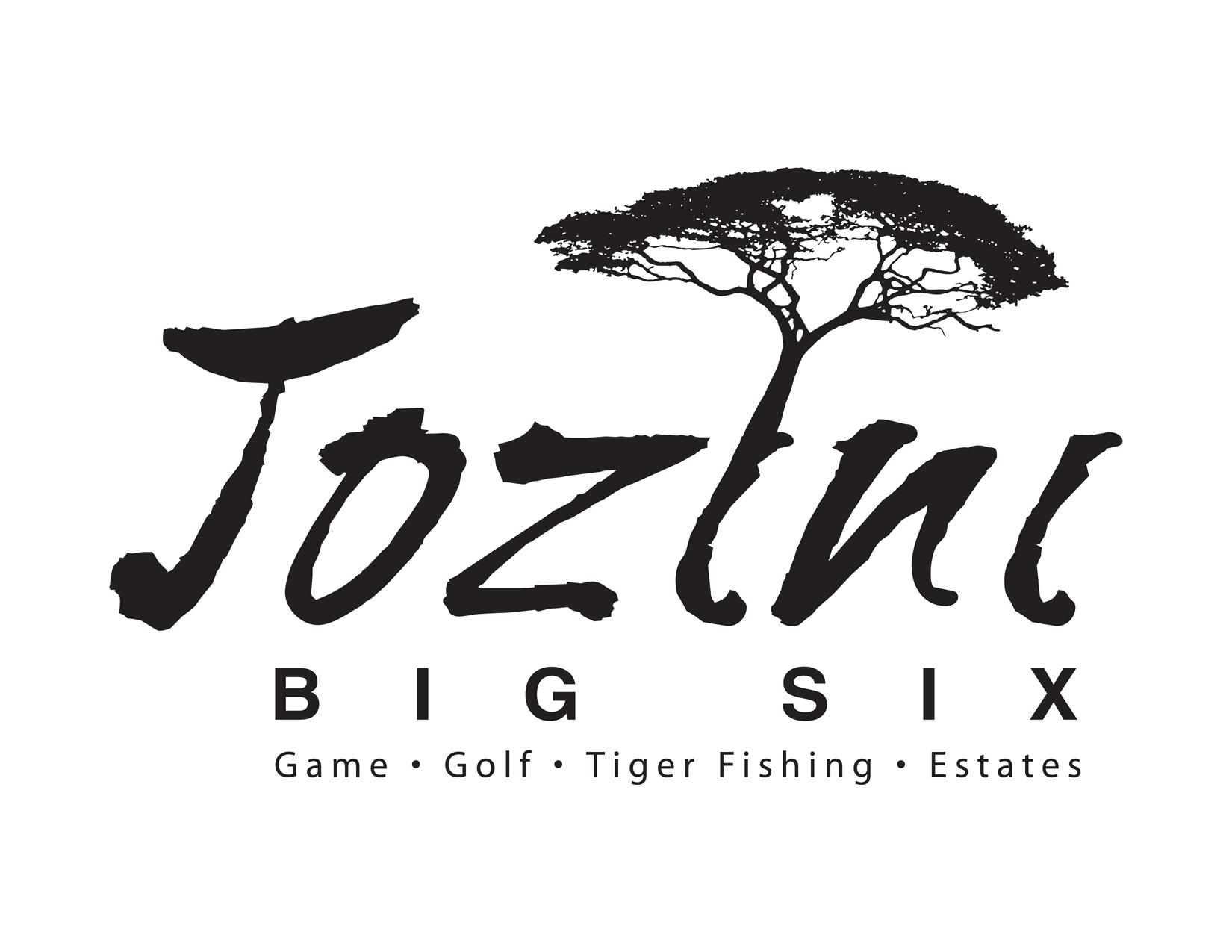 Portfolio image for Jozini